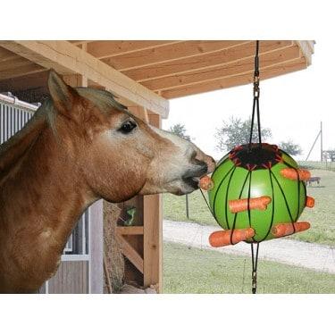Balle à jouer pour chevaux