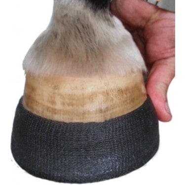 The Hoof
